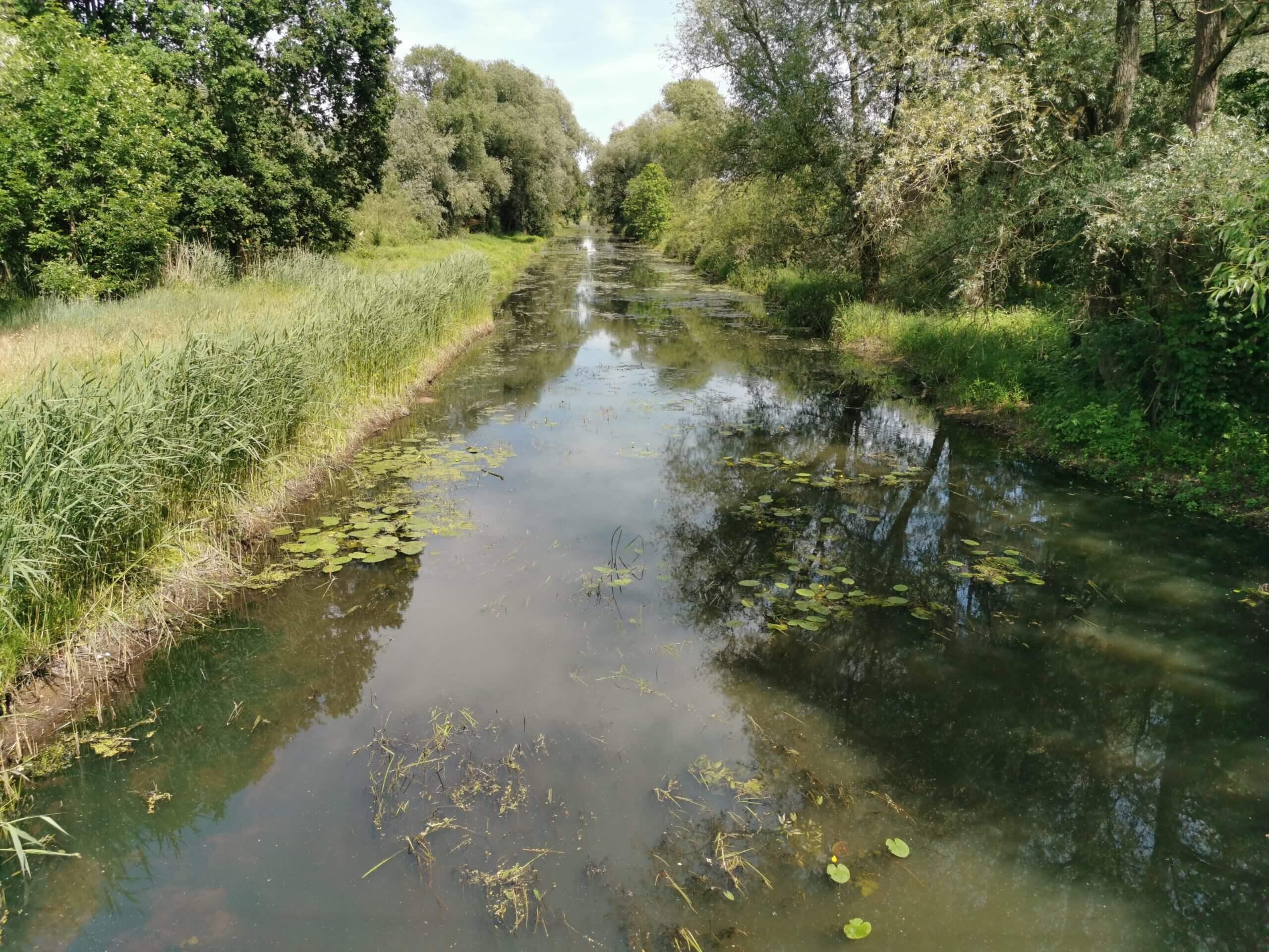 Deutsche Flüsse